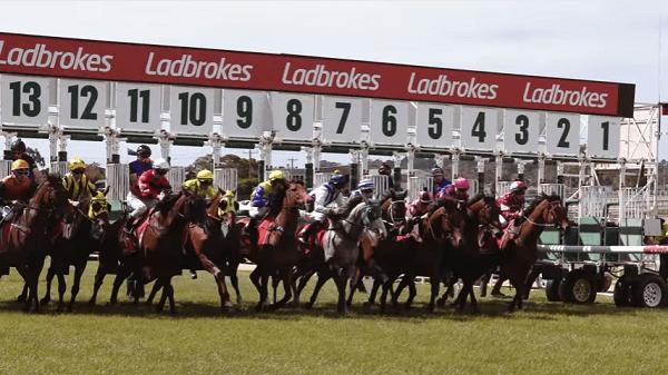 Newcastle Horse Racing