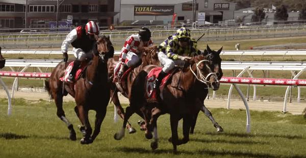 todays horse racing predictions